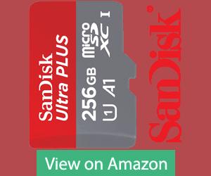 SanDisk Ultra PLUS 256GB SD Card